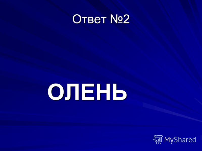 Ответ 2 ОЛЕНЬ ОЛЕНЬ