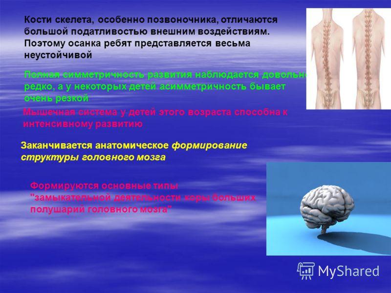 Кости скелета, особенно позвоночника, отличаются большой податливостью внешним воздействиям. Поэтому осанка ребят представляется весьма неустойчивой Полная симметричность развития наблюдается довольно редко, а у некоторых детей асимметричность бывает