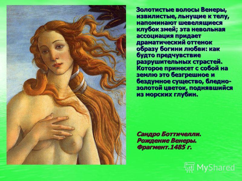 Золотистые волосы Венеры, извилистые, льнущие к телу, напоминают шевелящиеся клубок змей; эта невольная ассоциация придает драматический оттенок образ