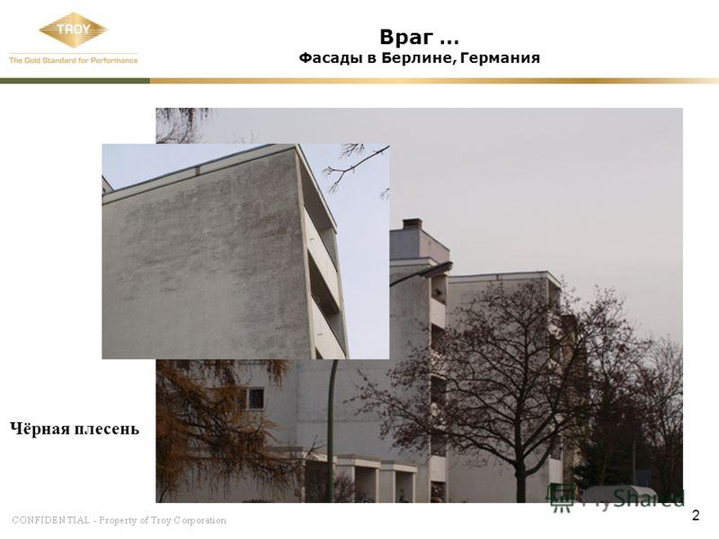 2 Враг … Фасады в Берлине, Германия Чёрная плесень