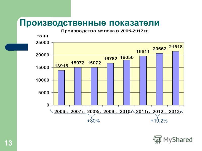 13 Производственные показатели +30%+19,2%