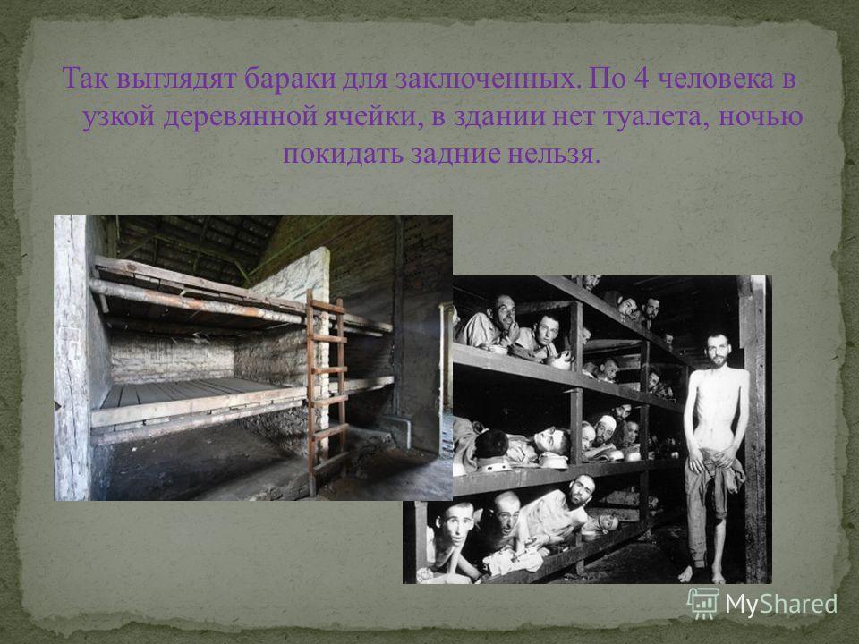 Так выглядят бараки для заключенных. По 4 человека в узкой деревянной ячейки, в здании нет туалета, ночью покидать задние нельзя.