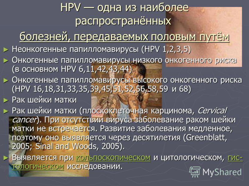 HPV одна из наиболее распространённых болезней, передаваемых половым путём Неонкогенные папилломавирусы (HPV 1,2,3,5) Неонкогенные папилломавирусы (HPV 1,2,3,5) Онкогенные папилломавирусы низкого онкогенного риска (в основном HPV 6,11,42,43,44) Онког