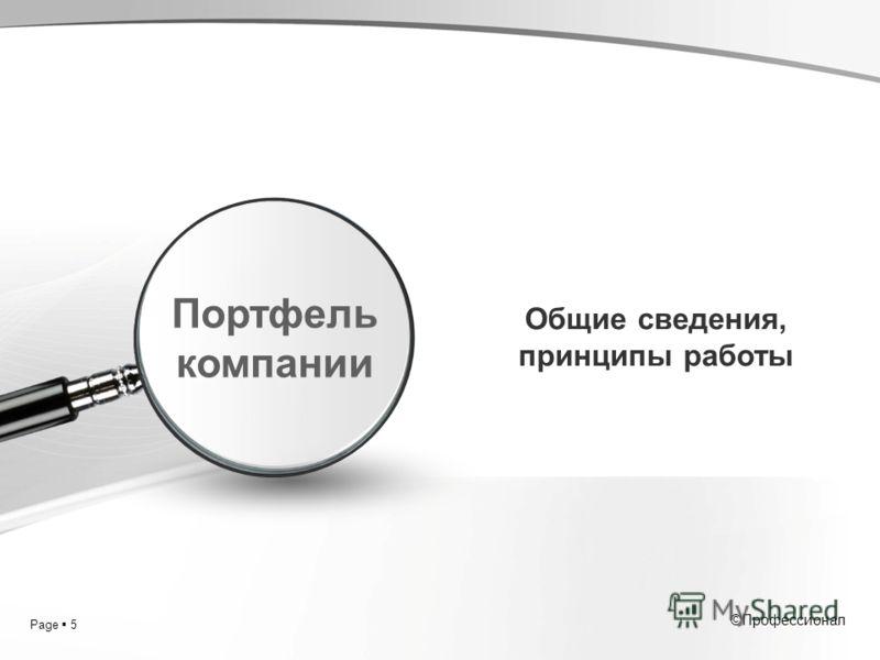 Page 5 ©Профессионал Общие сведения, принципы работы Портфель компании