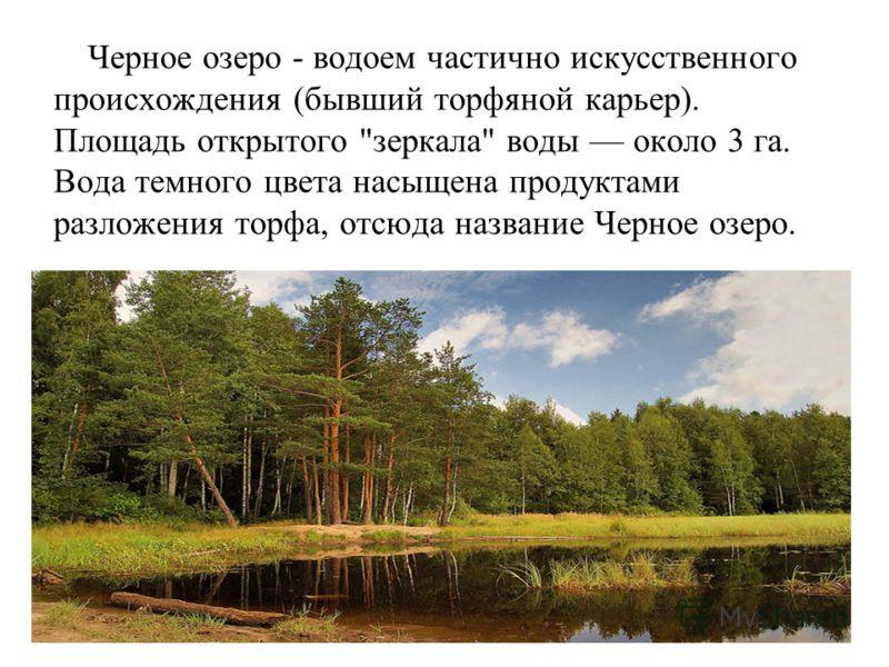 Черное озеро - водоем частично искусственного происхождения (бывший торфяной карьер). Площадь открытого зеркала воды около 3 га. Вода темного цвета насыщена продуктами разложения торфа, отсюда название Черное озеро.