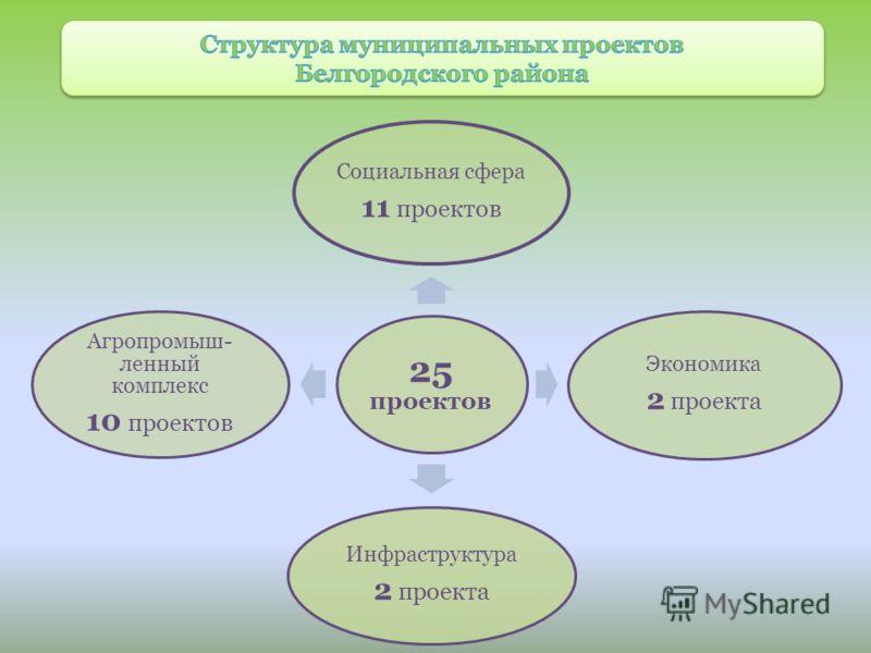 25 проектов Социальная сфера 11 проектов Экономика 2 проекта Инфраструктура 2 проекта Агропромыш- ленный комплекс 10 проектов