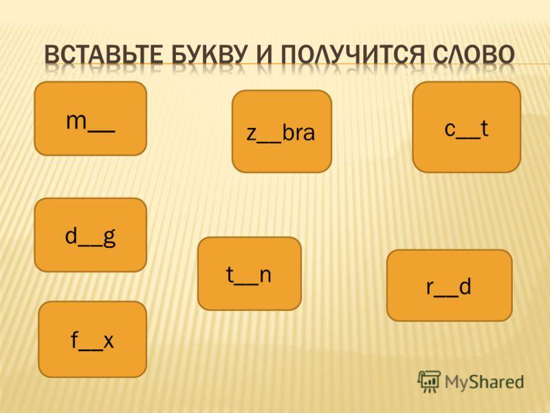 m__ z__bra c__t d__g t__n r__d f__x