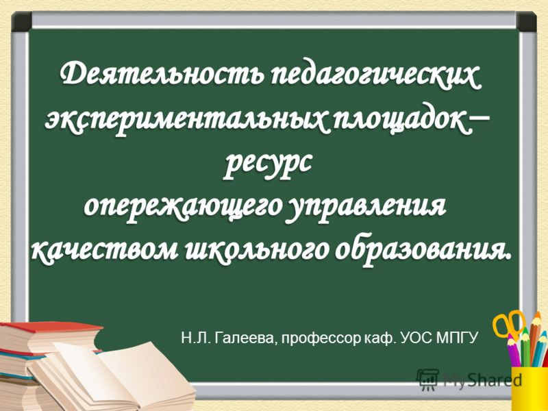 Н.Л. Галеева, профессор каф. УОС МПГУ