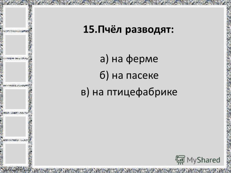 FokinaLida.75@mail.ru 15.Пчёл разводят: а) на ферме б) на пасеке в) на птицефабрике