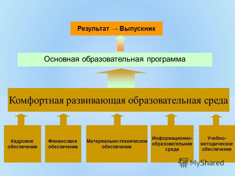 Учебно- методическое обеспечение Кадровое обеспечение Финансовое обеспечение Материально-техническое обеспечение Информационно- образовательная среда