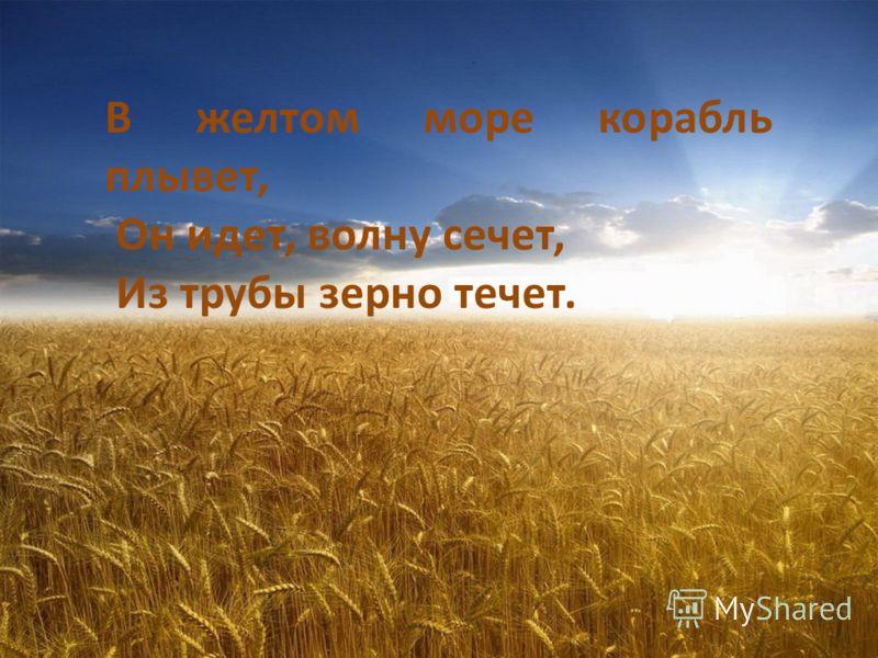 В желтом море корабль плывет, Он идет, волну сечет, Из трубы зерно течет.
