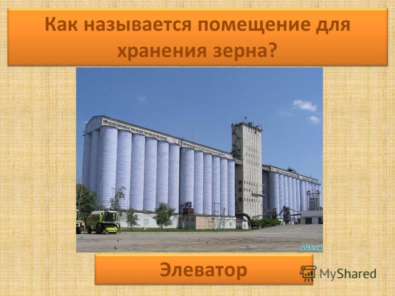 Как называется помещение для хранения зерна? Элеватор
