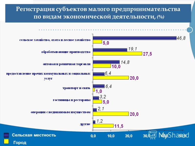 Регистрация субъектов малого предпринимательства по видам экономической деятельности, (%) Сельская местность Город