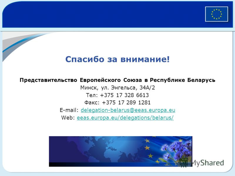 Спасибо за внимание! Представительство Европейского Союза в Республике Беларусь Минск, ул. Энгельса, 34A/2 Тел: +375 17 328 6613 Факс: +375 17 289 1281 E-mail: delegation-belarus@eeas.europa.eudelegation-belarus@eeas.europa.eu Web: eeas.europa.eu/del
