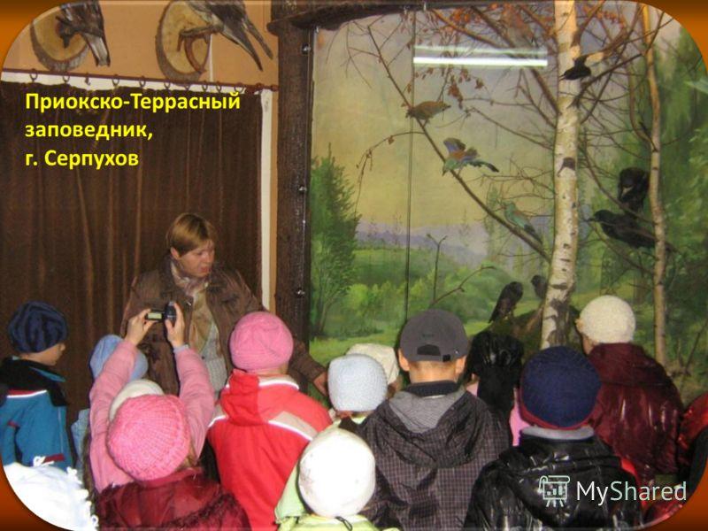 Приокско-Террасный заповедник, г. Серпухов