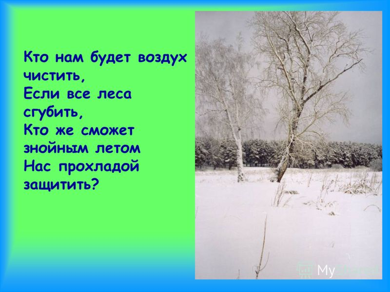 Кто нам будет воздух чистить, Если все леса сгубить, Кто же сможет знойным летом Нас прохладой защитить?
