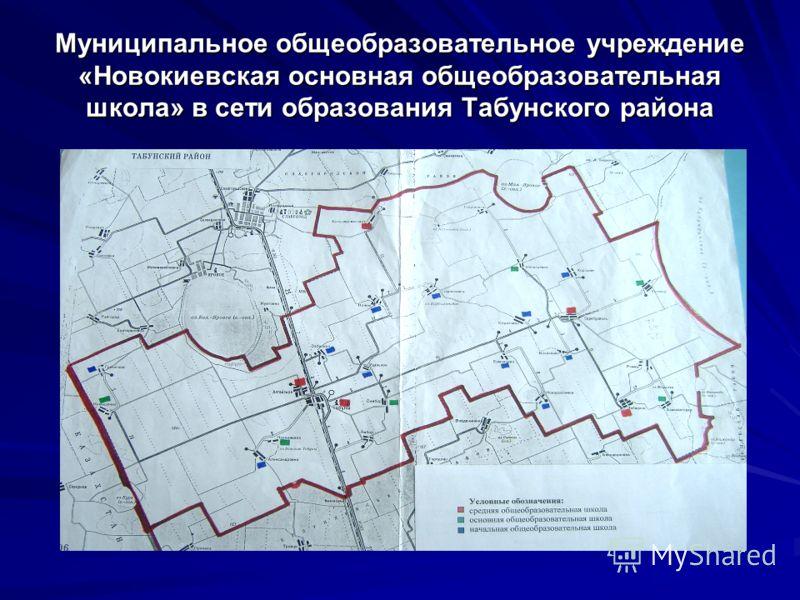 Муниципальное общеобразовательное учреждение «Новокиевская основная общеобразовательная школа» в сети образования Табунского района