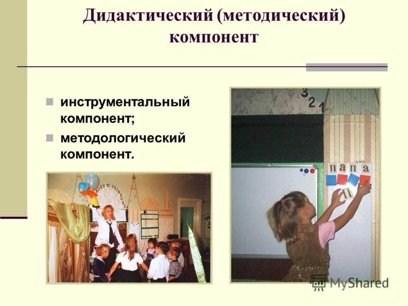 Дидактический (методический) компонент инструментальный компонент; методологический компонент.
