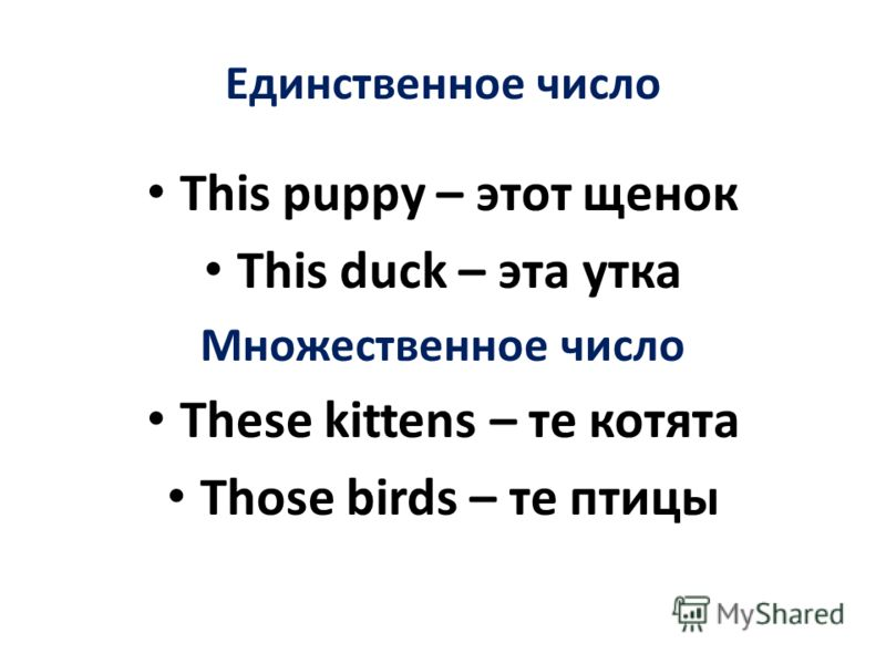 Единственное число This puppy – этот щенок This duck – эта утка Множественное число These kittens – те котята Those birds – те птицы