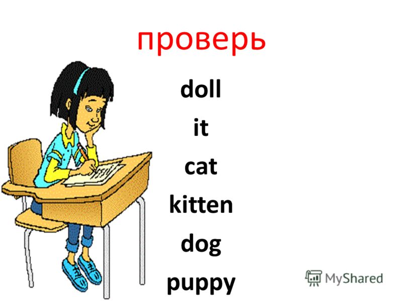 проверь doll it cat kitten dog puppy