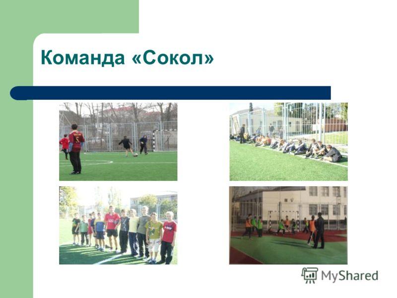 Команда «Сокол»