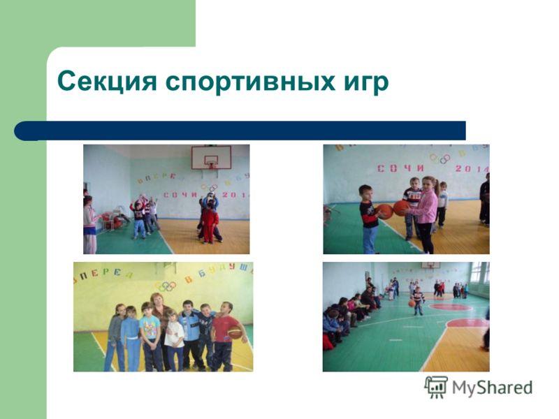 Секция спортивных игр