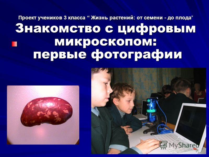 Проект учеников 3 класса Жизнь растений: от семени - до плода Знакомство с цифровым микроскопом: первые фотографии