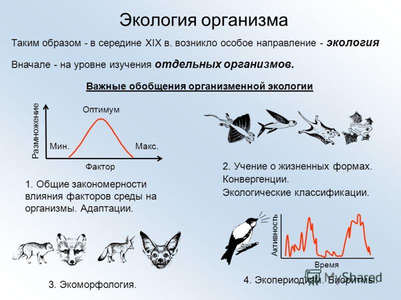 Экология организма Таким образом в середине XIX в. возникло особое направление - экология Вначале - на уровне изучения отдельных организмов. Важные обобщения организменной экологии 1. Общие закономерности влияния факторов среды на организмы. Адаптаци