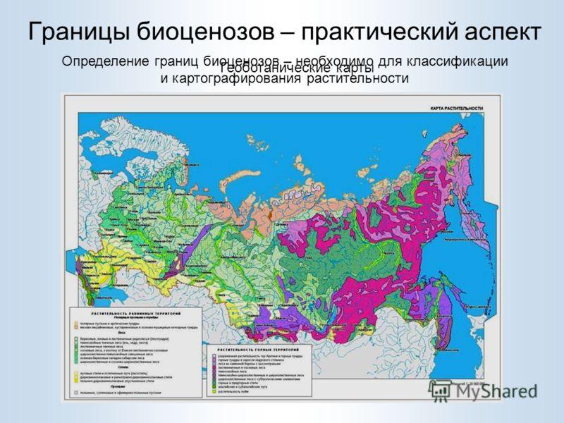 Границы биоценозов – практический аспект Болото Смешанный лес Березовый лес Хвойный лес Определение границ биоценозов – необходимо для классификации и картографирования растительности Геоботанические карты