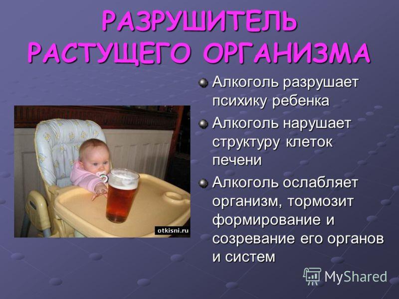 РАЗРУШИТЕЛЬ РАСТУЩЕГО ОРГАНИЗМА Алкоголь разрушает психику ребенка Алкоголь нарушает структуру клеток печени Алкоголь ослабляет организм, тормозит формирование и созревание его органов и систем