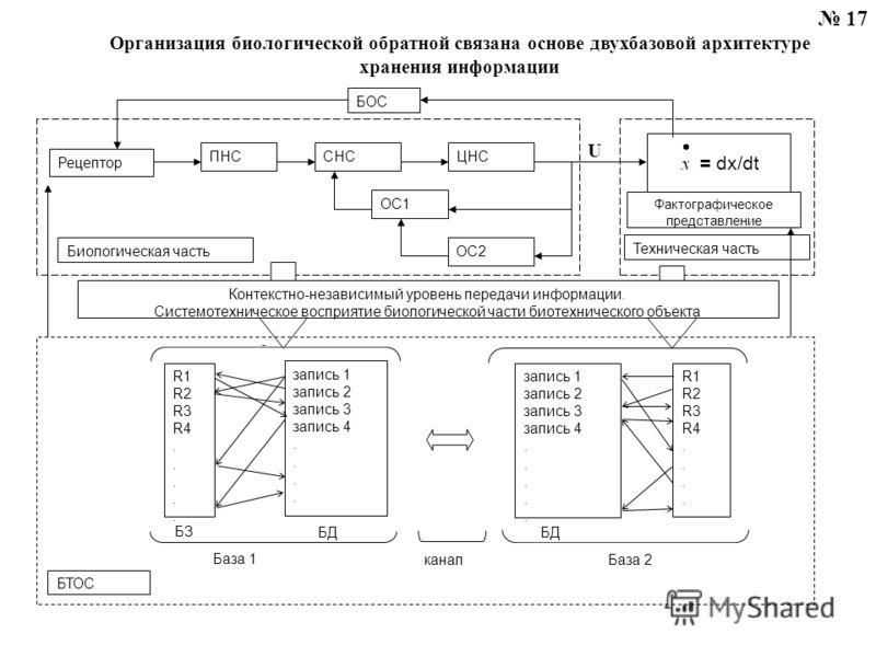 17 Организация биологической обратной связана основе двухбазовой архитектуре хранения информации ОС2 U ПНССНСЦНС ОС1 = dx/dt Рецептор БОС Биологическая часть Техническая часть запись 1 запись 2 запись 3 запись 4. запись 1 запись 2 запись 3 запись 4.