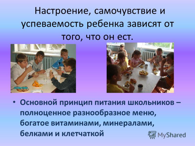 Настроение, самочувствие и успеваемость ребенка зависят от того, что он ест. Основной принцип питания школьников – полноценное разнообразное меню, богатое витаминами, минералами, белками и клетчаткой