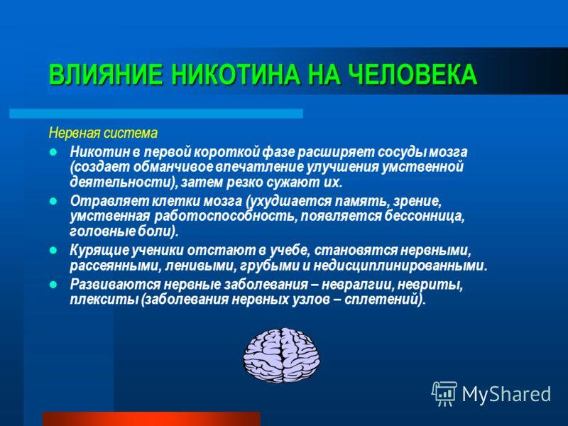 ВЛИЯНИЕ НИКОТИНА НА ЧЕЛОВЕКА Нервная система Никотин в первой короткой фазе расширяет сосуды мозга (создает обманчивое впечатление улучшения умственной деятельности), затем резко сужают их. Отравляет клетки мозга (ухудшается память, зрение, умственна