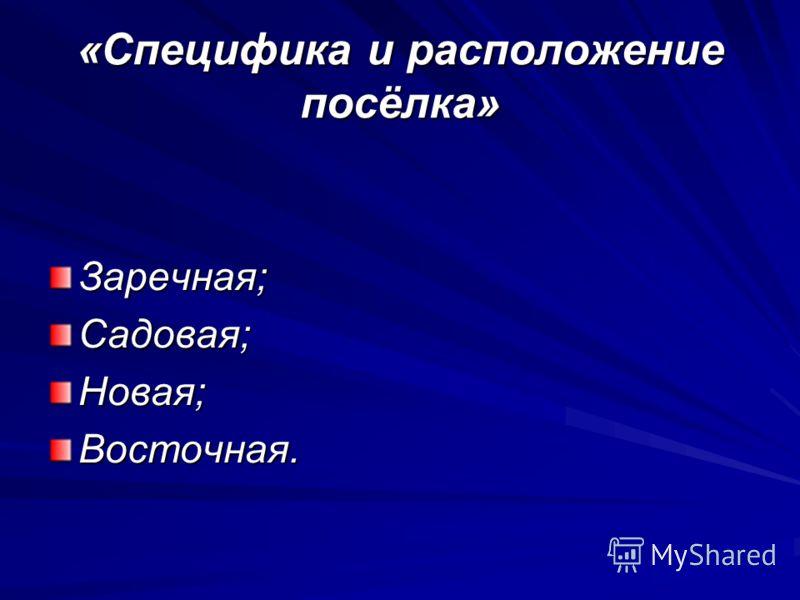 «Специфика и расположение посёлка» Заречная;Садовая;Новая;Восточная.