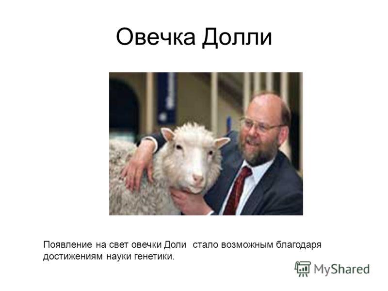 Овечка Долли Появление на свет овечки Доли стало возможным благодаря достижениям науки генетики.