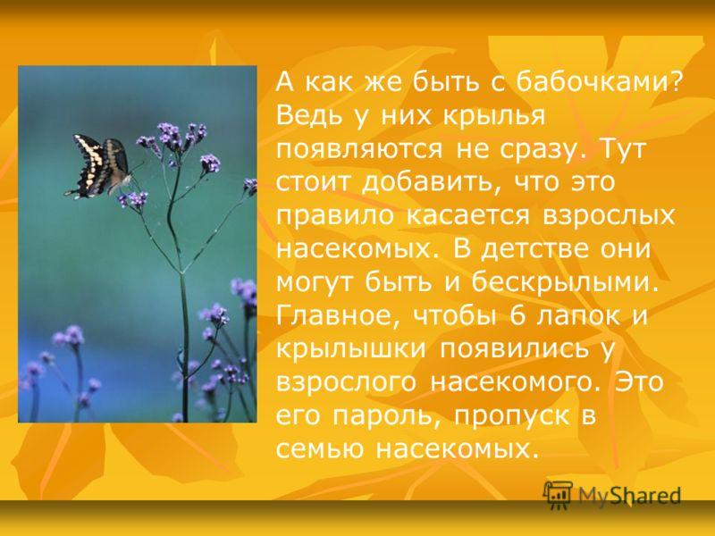 А как же быть с бабочками? Ведь у них крылья появляются не сразу. Тут стоит добавить, что это правило касается взрослых насекомых. В детстве они могут быть и бескрылыми. Главное, чтобы 6 лапок и крылышки появились у взрослого насекомого. Это его паро