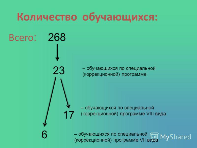 Количество обучающихся: Всего :268 23 – обучающихся по специальной (коррекционной) программе – обучающихся по специальной (коррекционной) программе VIII вида – обучающихся по специальной (коррекционной) программе VII вида 17 6