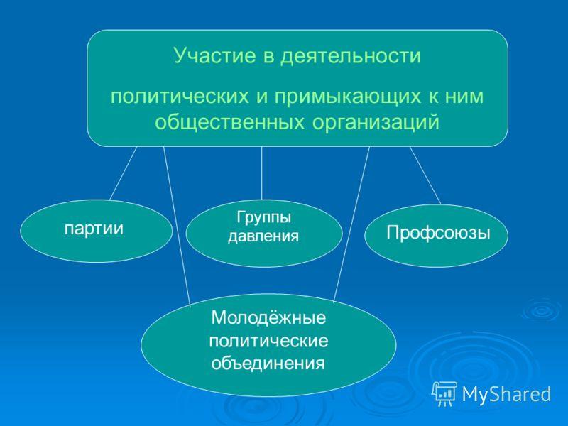 Участие в деятельности политических и примыкающих к ним общественных организаций партии Группы давления Профсоюзы Молодёжные политические объединения