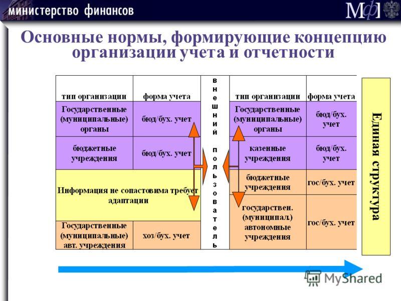 Основные нормы, формирующие концепцию организации учета и отчетности Единая структура