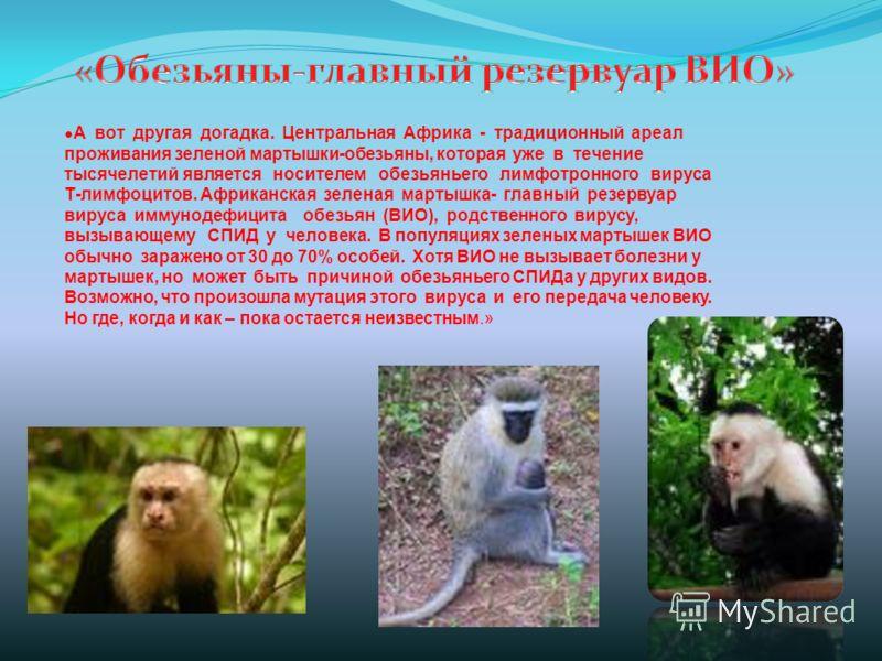 А вот другая догадка. Центральная Африка - традиционный ареал проживания зеленой мартышки-обезьяны, которая уже в течение тысячелетий является носителем обезьяньего лимфотронного вируса Т-лимфоцитов. Африканская зеленая мартышка- главный резервуар ви
