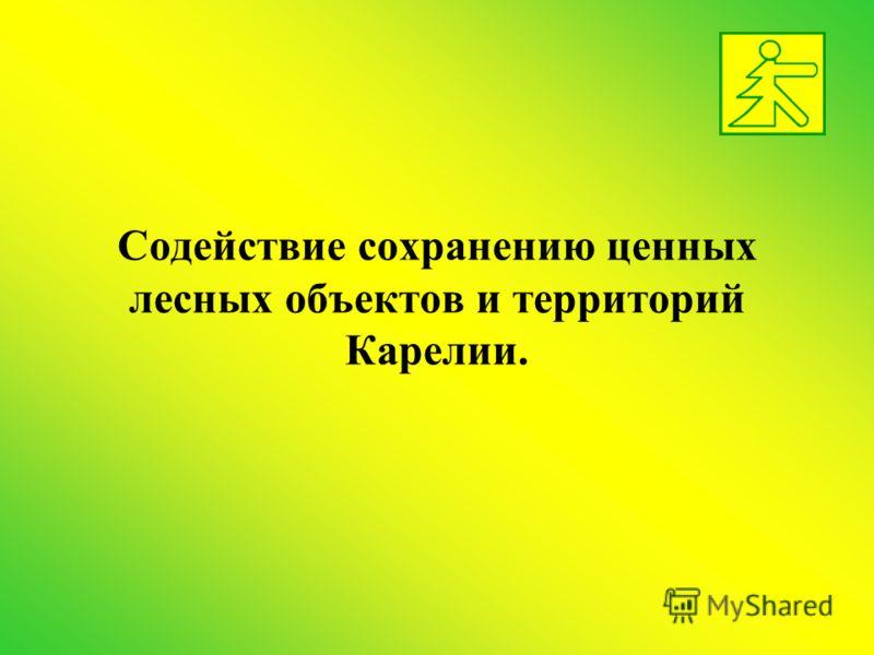 Содействие сохранению ценных лесных объектов и территорий Карелии.