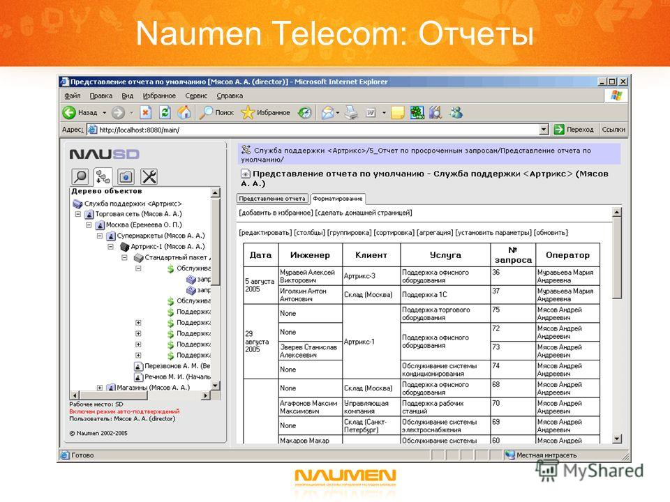 Naumen Telecom: Отчеты