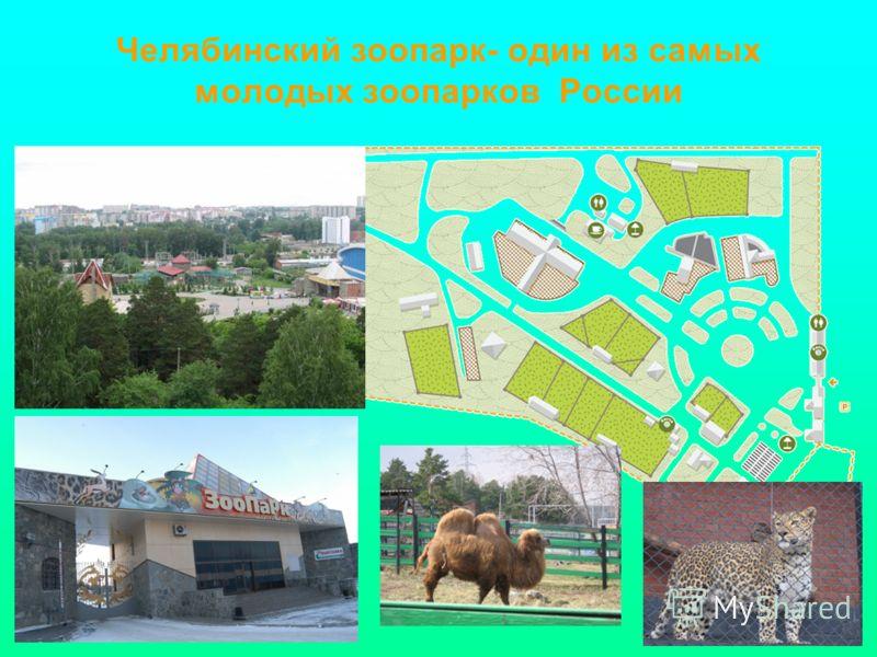 Челябинский зоопарк- один из самых молодых зоопарков России