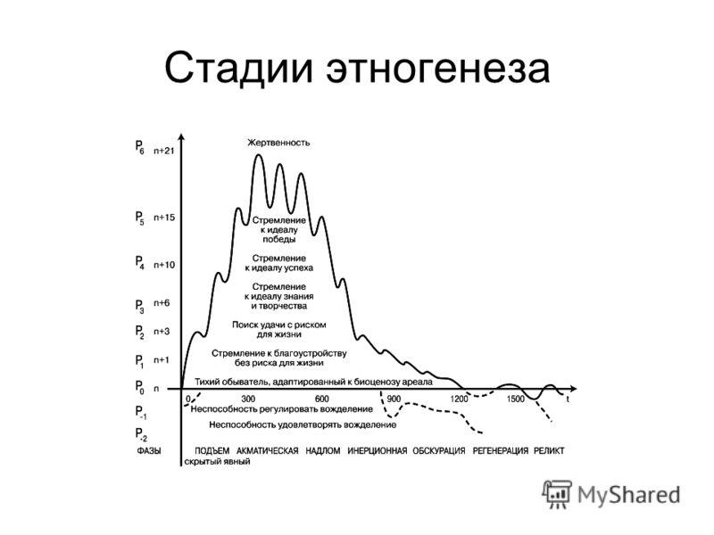 Стадии этногенеза