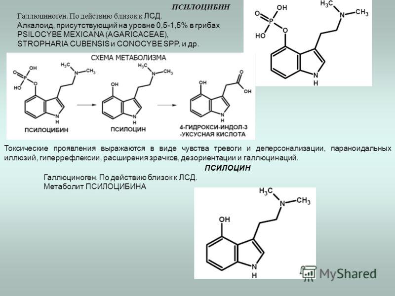 ПСИЛОЦИБИН Галлюциноген. По действию близок к ЛСД. Алкалоид, присутствующий на уровне 0,5-1,5% в грибах PSILOCYBE MEXICANA (AGARICACEAE), STROPHARIA CUBENSIS и CONOCYBE SPP. и др. Токсические проявления выражаются в виде чувства тревоги и деперсонали