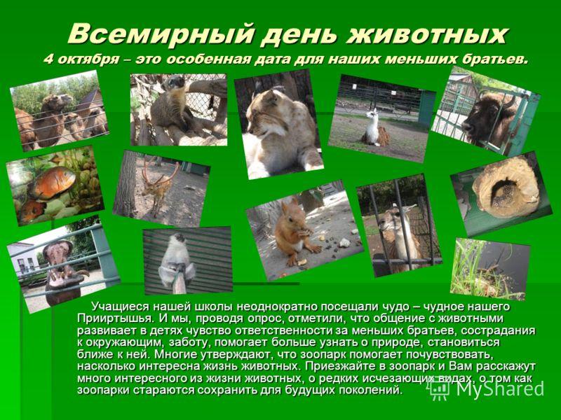 Всемирный день животных 4 октября – это особенная дата для наших меньших братьев. Учащиеся нашей школы неоднократно посещали чудо – чудное нашего Прииртышья. И мы, проводя опрос, отметили, что общение с животными развивает в детях чувство ответственн