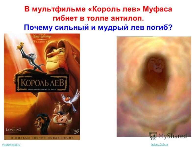 В мультфильме «Король лев» Муфаса гибнет в толпе антилоп. Почему сильный и мудрый лев погиб? mediamovies.ru levking.3bb.ru