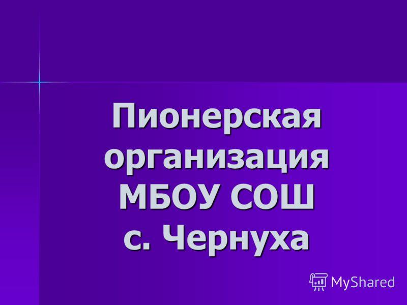 Пионерская организация МБОУ СОШ с. Чернуха