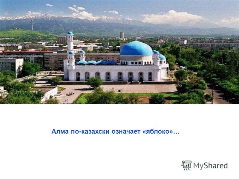 Алма по-казахски означает «яблоко»…