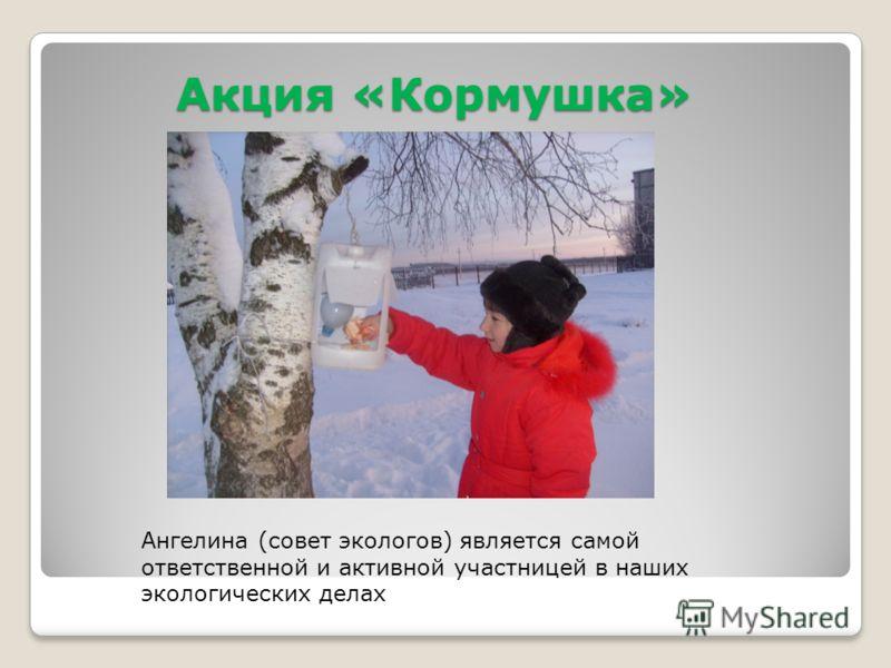 Акция «Кормушка» Ангелина (совет экологов) является самой ответственной и активной участницей в наших экологических делах